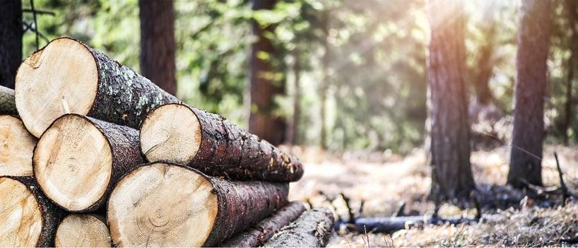 lumber_2-wide